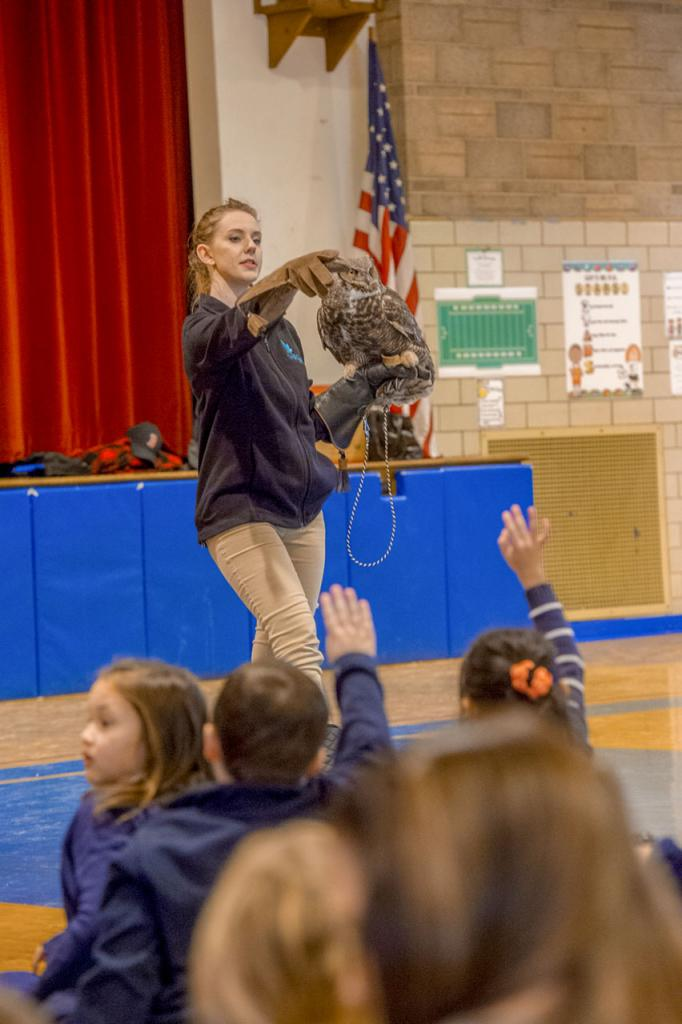 """Bree Riesbeck of Tanglewood Nature Center answers students' questions about """"Sophie"""" the great horned owl at Holy Family Catholic School in Elmira Jan. 30."""