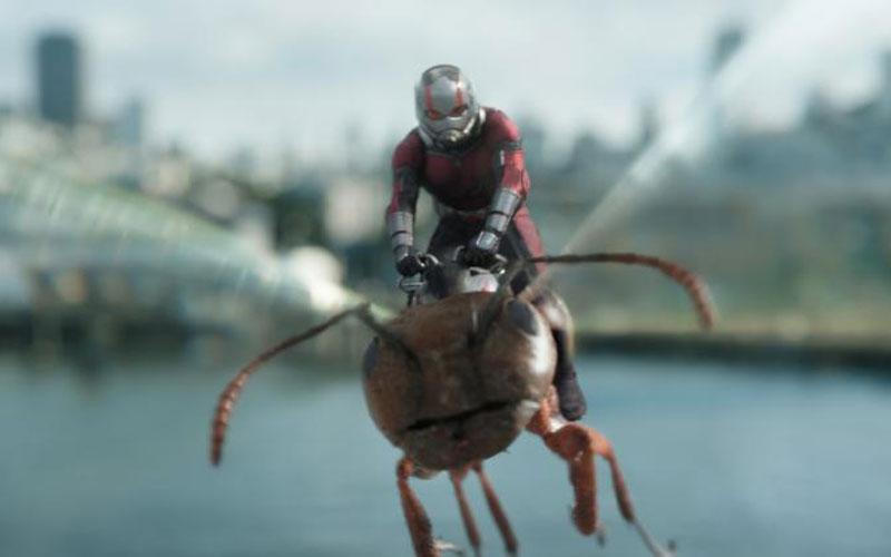 """Paul Rudd stars in a scene from the movie """"Ant-Man and the Wasp."""" The Catholic News Service classification, A-III -- adults. Motion Picture Association of America rating, PG-13 -- parents strongly cautioned. Some material may be inappropriate for children under 13. (CNS photo by Marvel Studios)"""