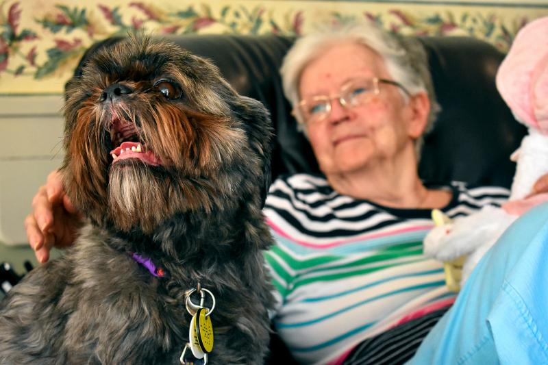 A therapy dog from Lollypop Farm visits residents at the Sisters of St. Joseph Motherhouse in Pittsford July 31.