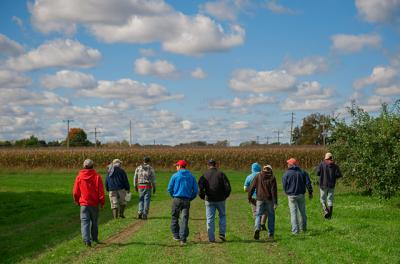 Migrant workers walk into a Brockport farm field in this Oct. 2013 file photo.