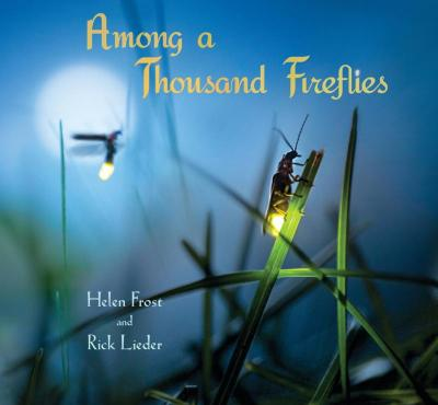 """This is the cover of """"Among a Thousand Fireflies"""" by Helen Frost and Rick Lieder. The book is reviewed by Regina Lordan."""