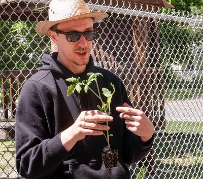 "Nathaniel Mich of Foodlink explains how to plant a tomato plant May 20 as part of The Cathedral Community's ""Adopt-a-Crop"" program."